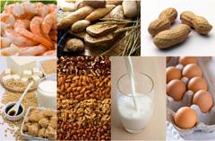 Allergén gyermekételek, étel allergia